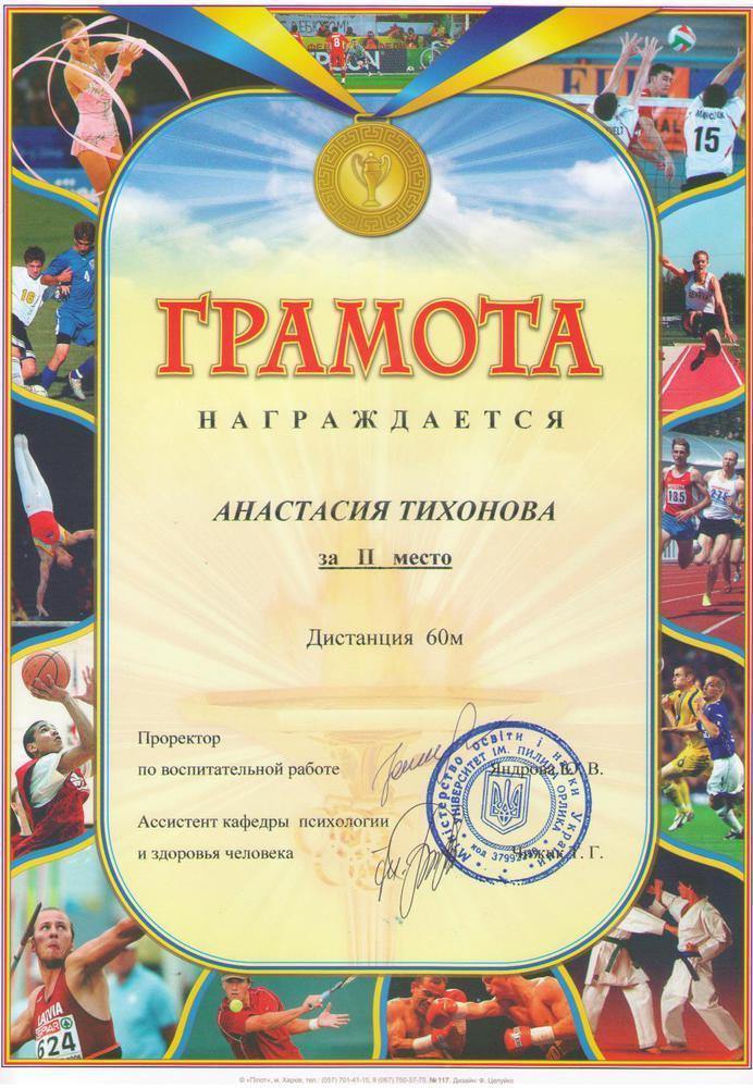 Diplom_ 2